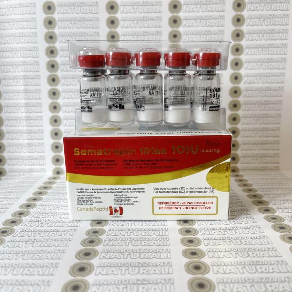 Somatropin 191aa 10 IU Canada Peptides
